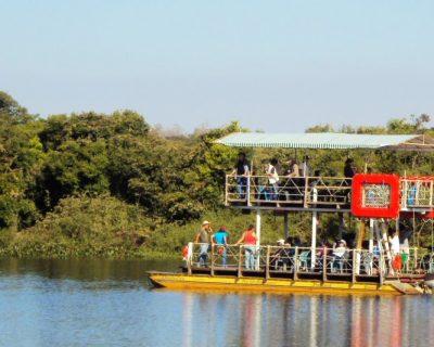 Pantanal (Fazenda São Francisco)
